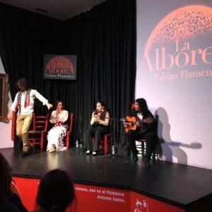 entradas para espectáculos flamenco en Granada